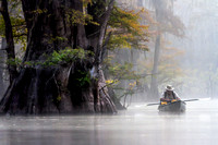 Peaceful Morning in the Bayou, Saint Catherine's Creek