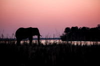 Sunset at Royal Zambezi Lodge - Sundowner